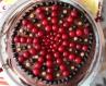 Торт Смородиновий сюрприз